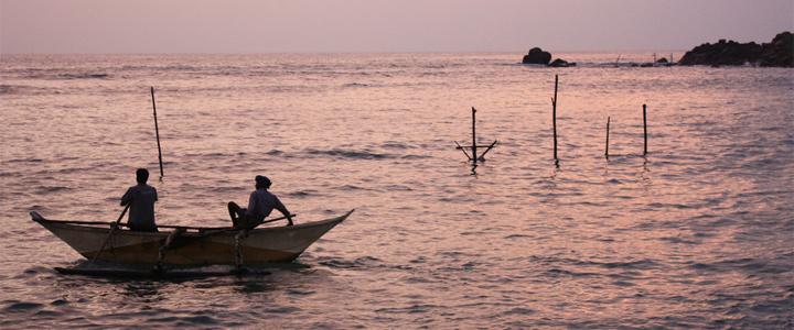 Voyage au Sri Lanka : entre culture, nature et plages paradisiaques