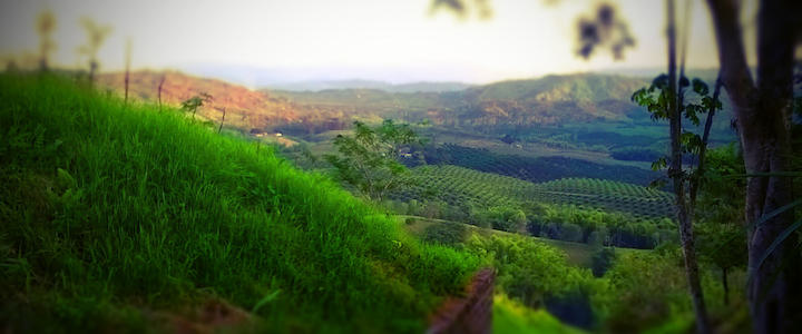 Voyage en Colombie : les coups de coeur de Natalia