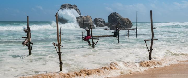 pêcheurs sur échasse du sri lanka
