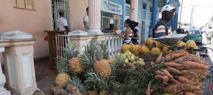 Voyage à Cuba : que voir, que faire dans la région de Pinar del Rio