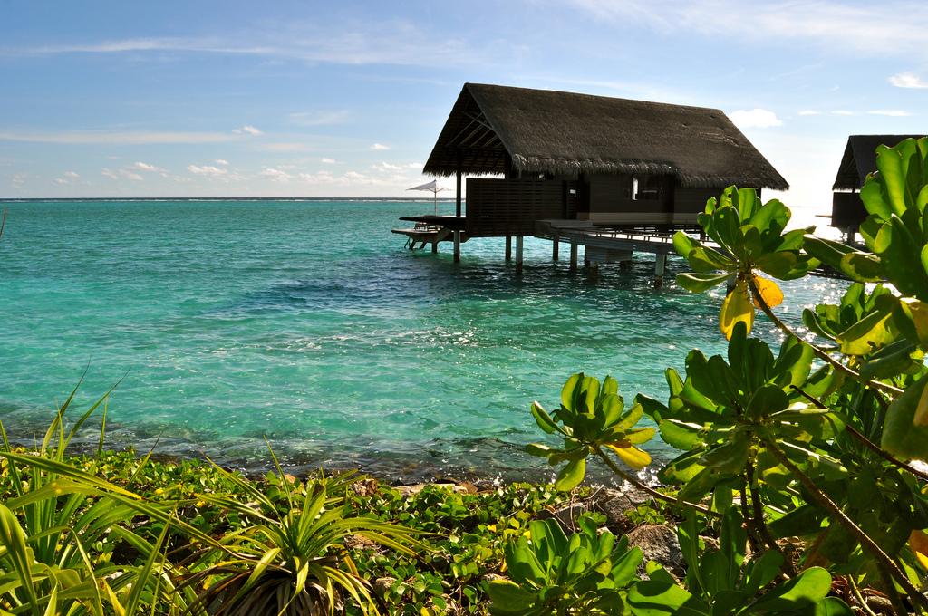 bungalow sur pilotis Maldives