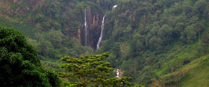 cascade et jungle au sri lanka