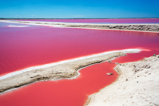 lac rose las coloradas yucatan